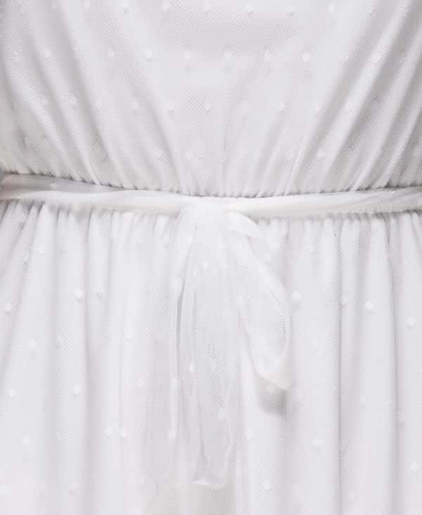 sheer-polka-dot-frill-detail-dress-p4673-116603_image – kopia – kopia