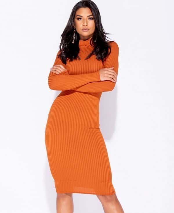 skinny-rib-knit-high-neck-midi-dress-p5828-172732_image
