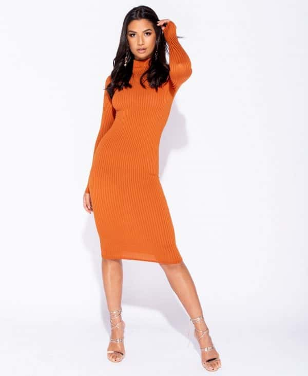 skinny-rib-knit-high-neck-midi-dress-p5828-172733_image