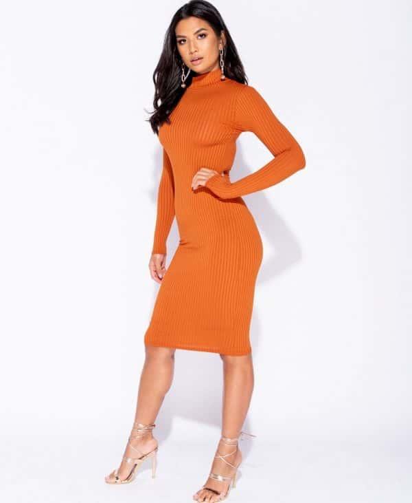 skinny-rib-knit-high-neck-midi-dress-p5828-172734_image