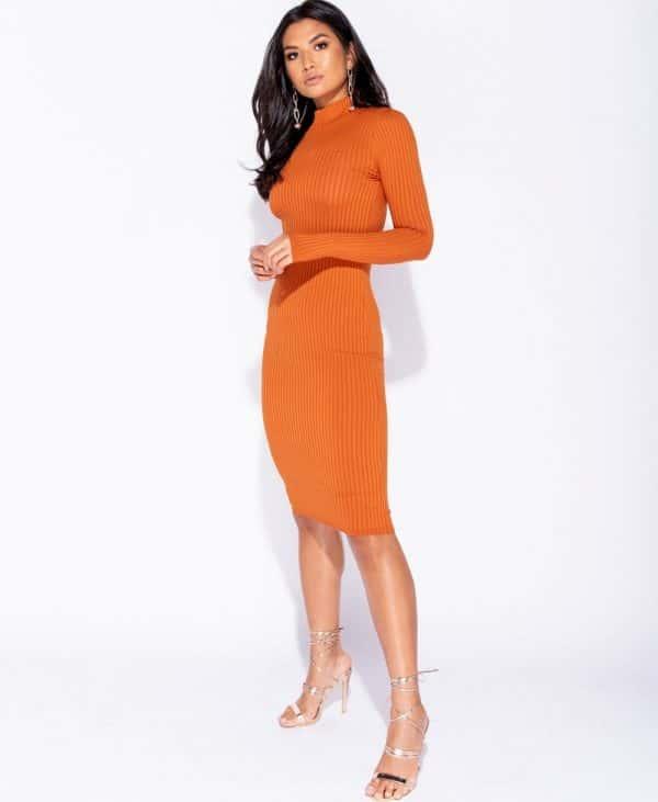 skinny-rib-knit-high-neck-midi-dress-p5828-172735_image