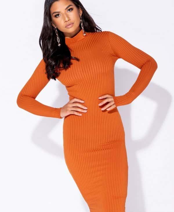 skinny-rib-knit-high-neck-midi-dress-p5828-172736_image