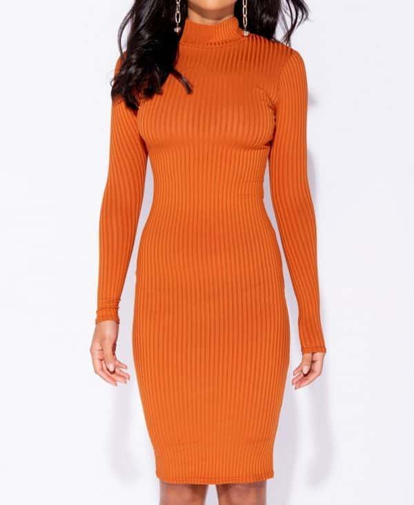 skinny-rib-knit-high-neck-midi-dress-p5828-172737_image