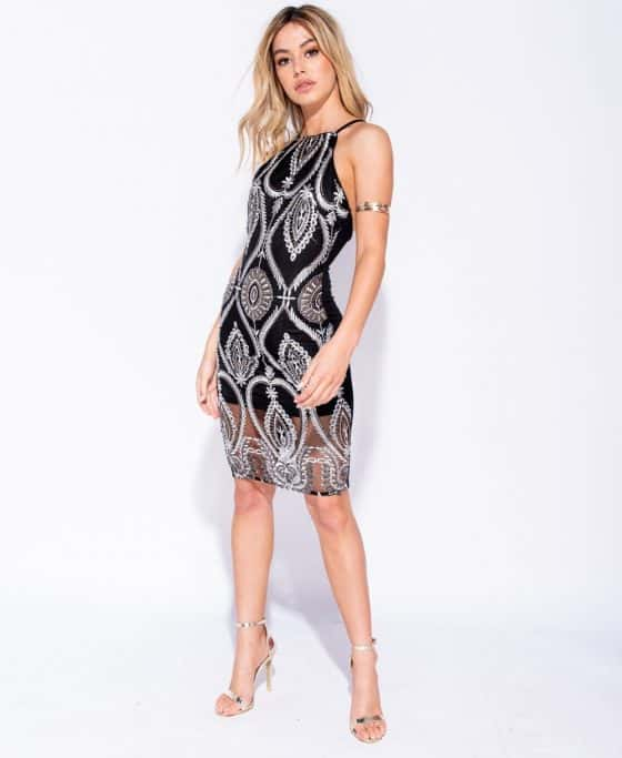 embroidered-front-sheer-hem-bodycon-dress-p6117-187243_image