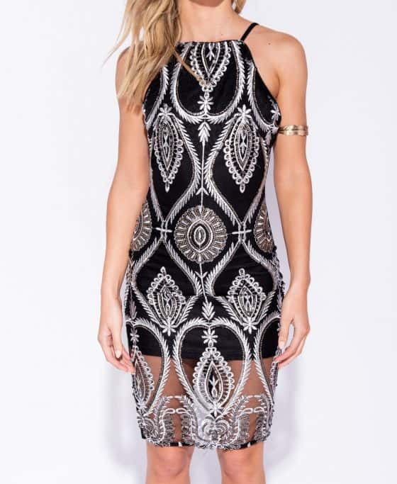 embroidered-front-sheer-hem-bodycon-dress-p6117-187244_image