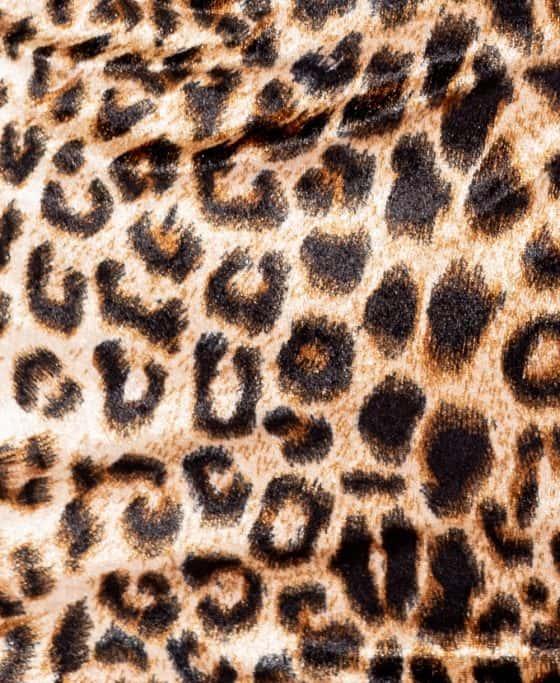 leopard-print-velvet-high-neck-bodycon-dress-p5643-160312_image – kopia – kopia