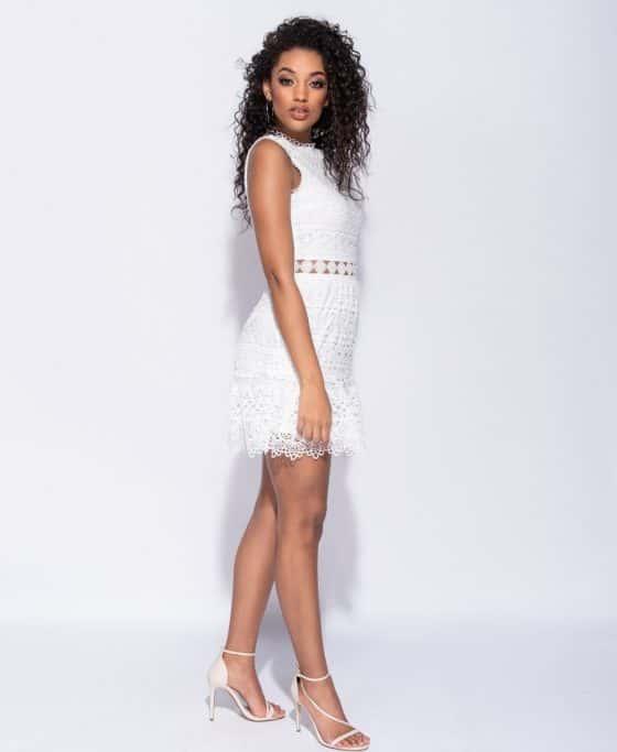 lace-sleeveless-bodycon-mini-dress-p6697-241105_image