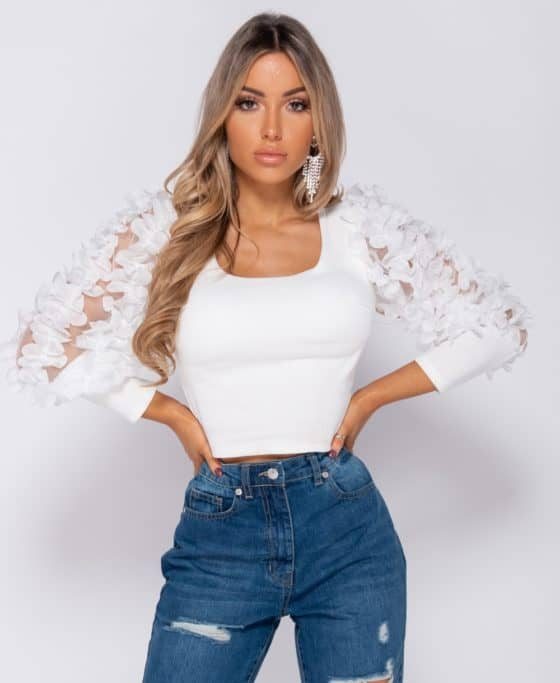 sheer-frill-sleeve-scoop-neck-cropped-rib-knit-top-p8282-594989_image