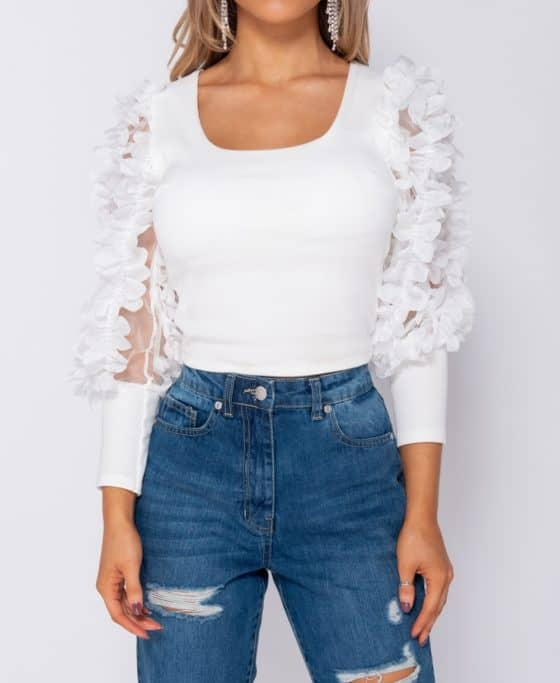 sheer-frill-sleeve-scoop-neck-cropped-rib-knit-top-p8282-594990_image