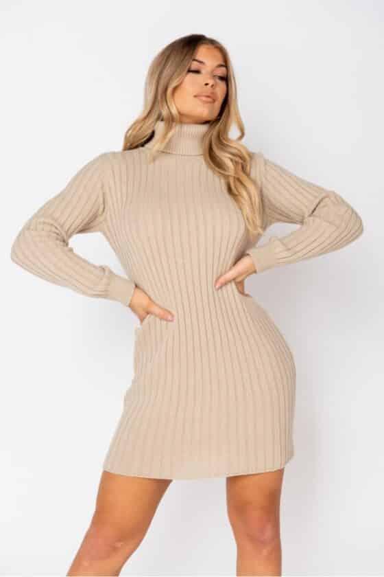 beige-rib-knit-roll-neck-jumper-dress-p9622-1102524_image