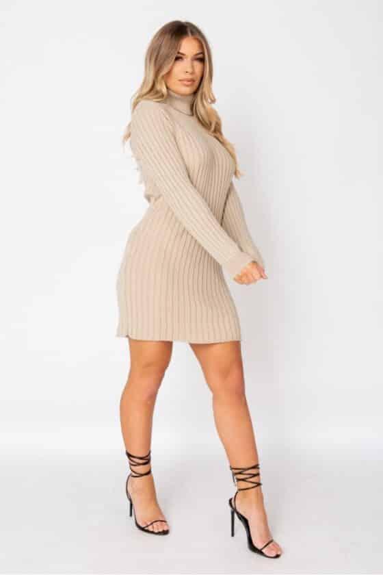 beige-rib-knit-roll-neck-jumper-dress-p9622-1102527_image