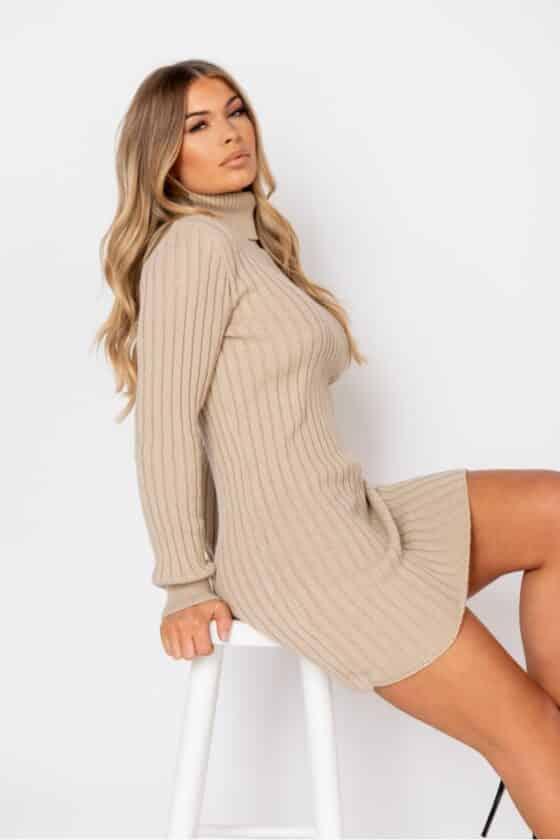 beige-rib-knit-roll-neck-jumper-dress-p9622-1102529_image