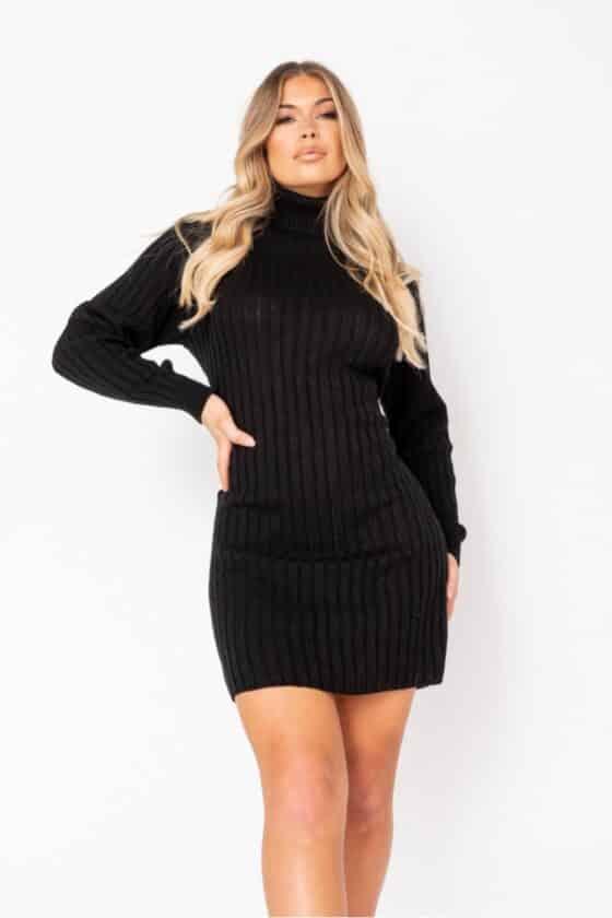black-rib-knit-roll-neck-jumper-dress-p9611-1102450_image