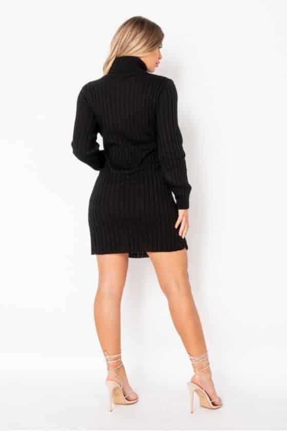 black-rib-knit-roll-neck-jumper-dress-p9611-1102457_image